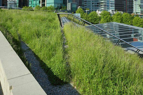 Telhado verde benefícios